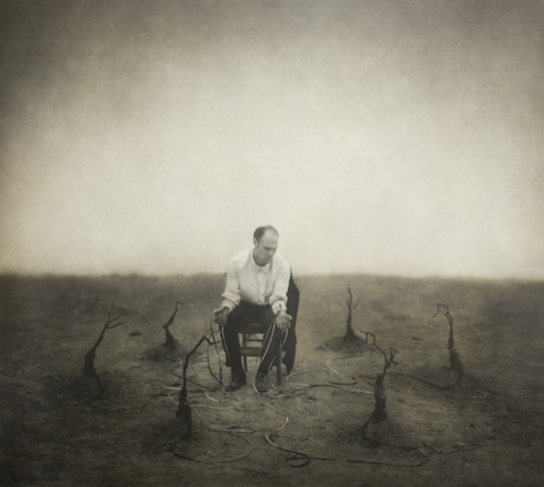 Earth Elegies by Robert and Shana ParkeHarrison (from the artists' website)