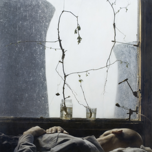 Gray Dawn by Robert and Shana ParkeHarrison (from the Catherine Edeleman Gallery website)